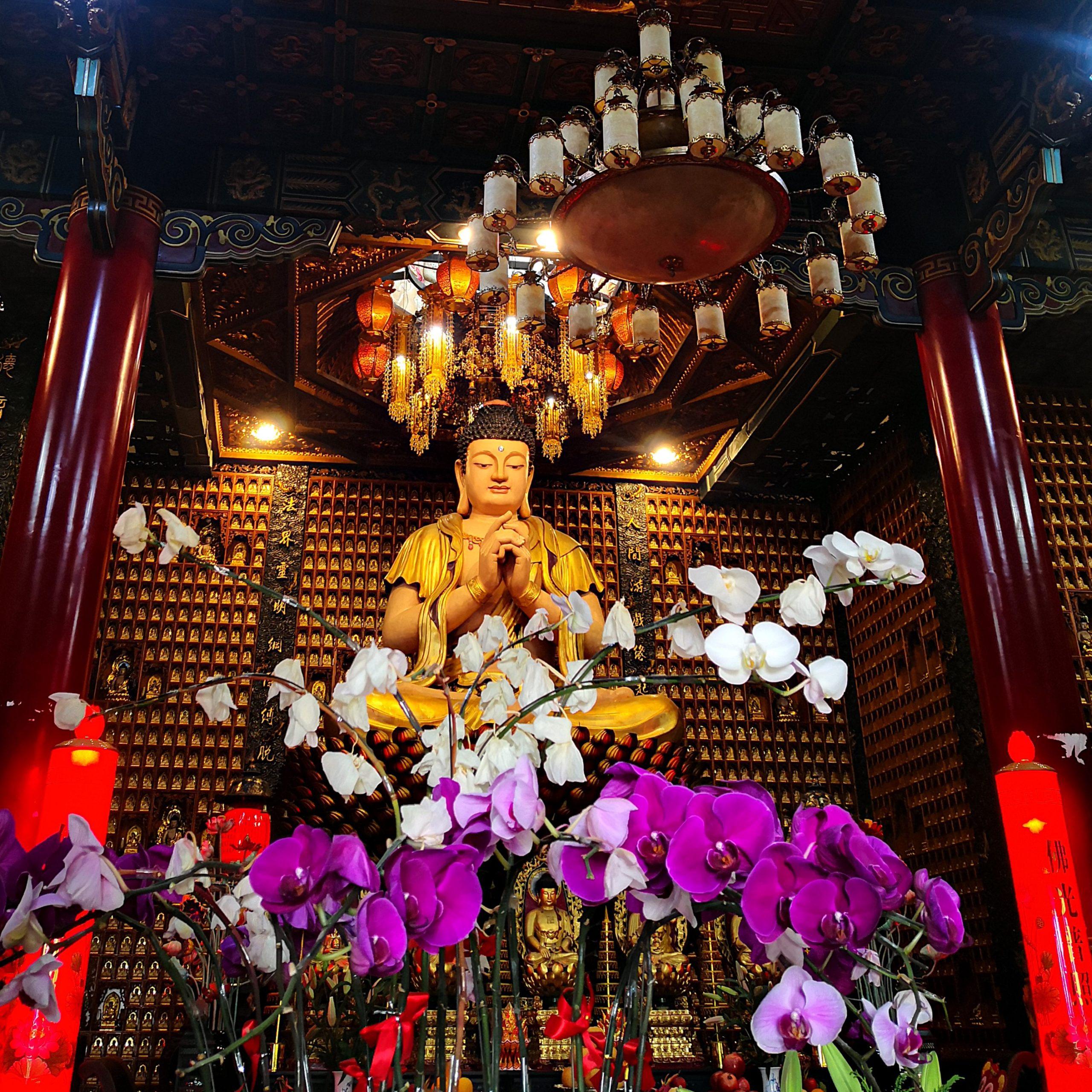 Zehntausend Buddhas und eine neue Kultur